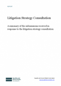 This is the cover for the Litigation strategy consultation report