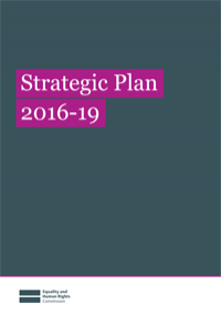Publication cover for strategic plan 2016-2019